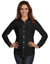 Women's Dynasty Dress Shirt Main Image