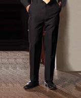 Men's 100 Polyester Pant Main Image
