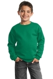 Youth Crewneck Sweatshirt Kelly Thumbnail