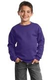 Youth Crewneck Sweatshirt Purple Thumbnail