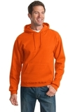 Pullover Hooded Sweatshirt Burnt Orange Thumbnail