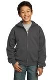 Youth Full-zip Hooded Sweatshirt Charcoal Thumbnail