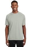 Dry Zone Short Sleeve Raglan T-shirt Silver Thumbnail