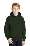 Hooded Sweatshirt Forest Green Thumbnail