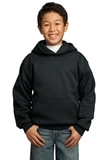 Youth Pullover Hooded Sweatshirt Jet Black Thumbnail
