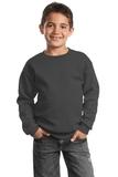 Youth Crewneck Sweatshirt Charcoal Thumbnail