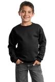 Youth Crewneck Sweatshirt Jet Black Thumbnail