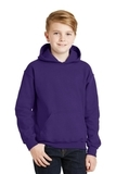 Hooded Sweatshirt Purple Thumbnail