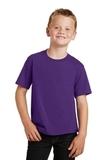 Youth Fan Favorite Tee Team Purple Thumbnail