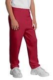 Youth Sweatpant Red Thumbnail