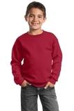 Youth Crewneck Sweatshirt Red Thumbnail