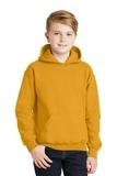 Hooded Sweatshirt Gold Thumbnail