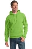 Pullover Hooded Sweatshirt Kiwi Thumbnail