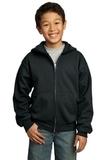 Youth Full-zip Hooded Sweatshirt Jet Black Thumbnail
