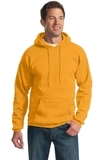 Pullover Hooded Sweatshirt Gold Thumbnail