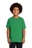 Youth Ultra Cotton 100 Cotton T-shirt Irish Green Thumbnail