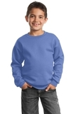 Youth Crewneck Sweatshirt Carolina Blue Thumbnail