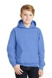 Hooded Sweatshirt Carolina Blue Thumbnail